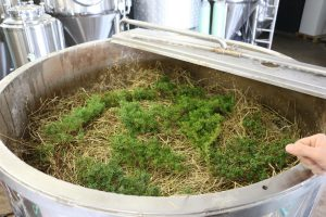 Juniper and Hay in the Mash