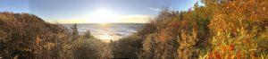 Panoramic picking view