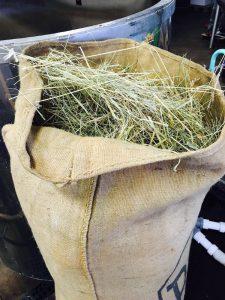Fresh hay