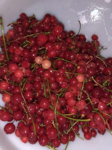 Funneling currants